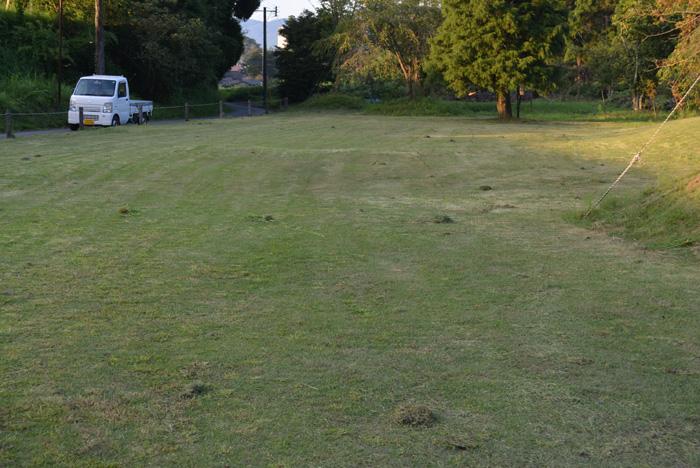 桜の広場、芝刈り後